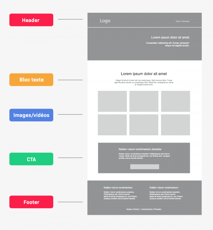 must-have newsletter components
